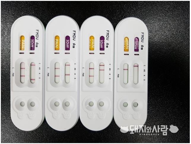 구제역 혈청형 신속 감별 진단키트. 우리나라는 O형과 A형이 발병한 바 있으며 Asia1은 인근 국가에서 문제가 되고 있습니다.